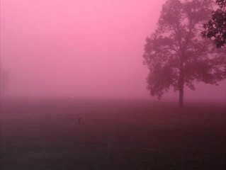 "Dealing With The ""Pink Fog"""