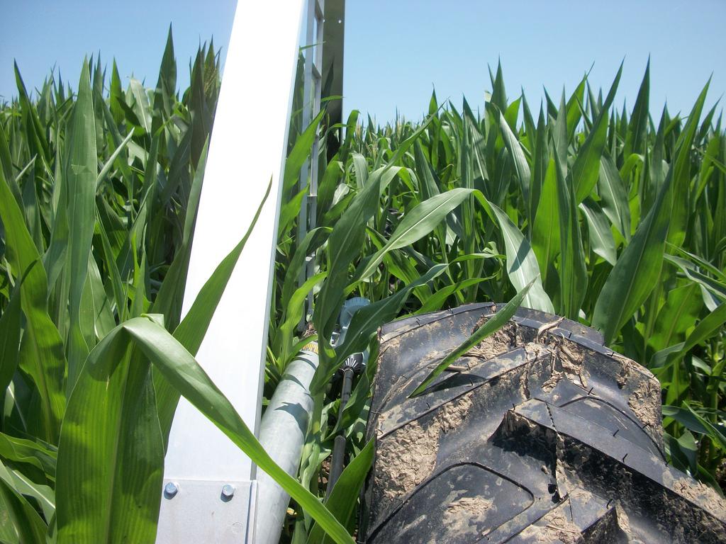 nke alumigator tower closeup in corn.jpg