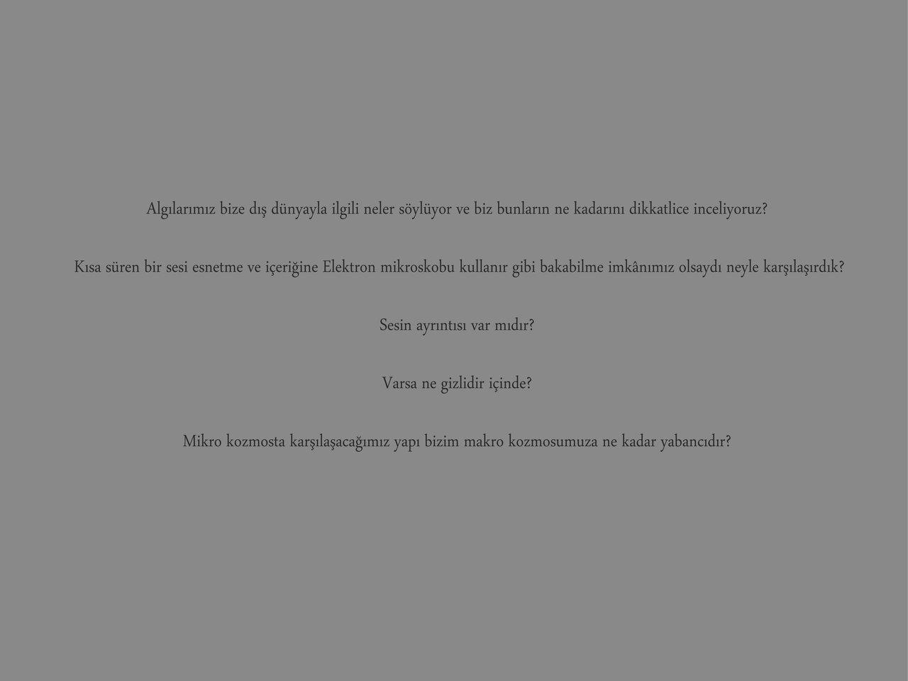 Mandelbrot Cello tr 1.jpg