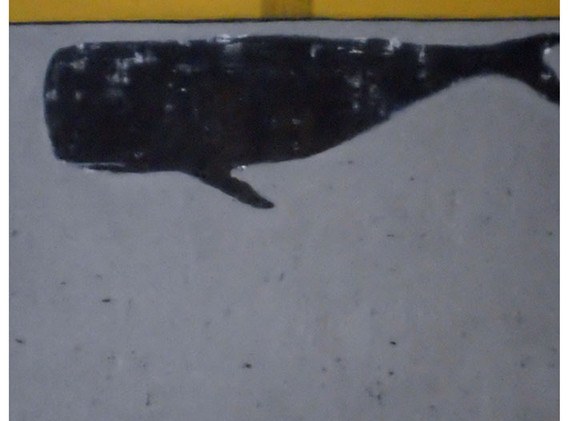 re-A big whale in Jan 2011.jpg