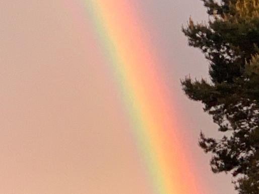 Night of Rainbows