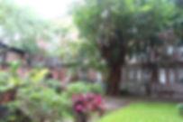 IMG_8121_edited.jpg
