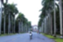 IMG_8623_edited.jpg
