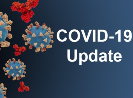 Is it safe to go to the dentist during COVID-19?