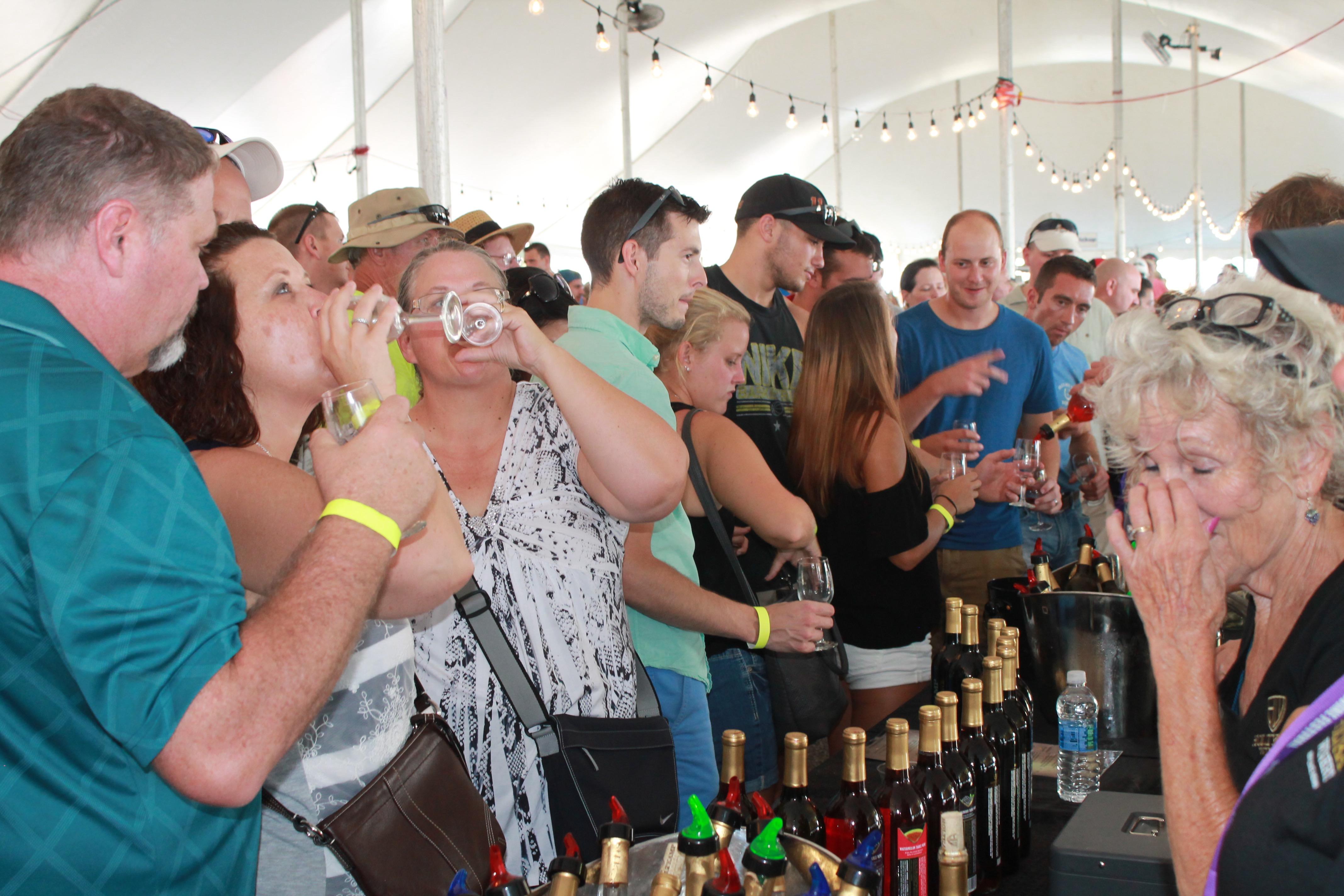 Swiss Wine Festival 2016