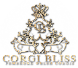 Corgi Logo PNG.png