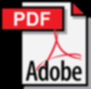 Adobe_PDF-logo-DFB83F69E2-seeklogo.com.p
