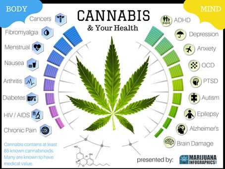 """Cannabis """"Light""""... è ancora legale?"""
