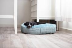 Urban Paw Alure Round Bumper Pet bed Lif