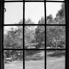 UCLA dining hall blurred glass window.jp