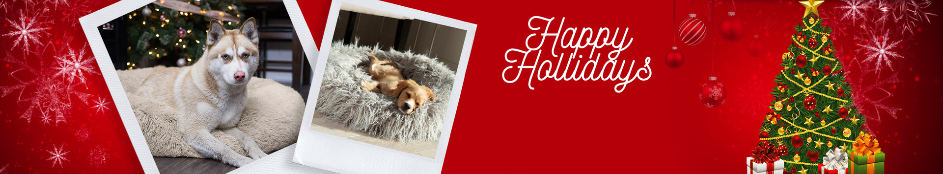 Online Banner for Holidays.jpg