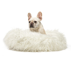 Pawsh Mongolian Fur Pet Bed with Model.J