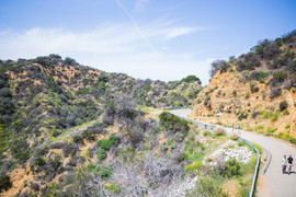 Hiking pathway.jpg