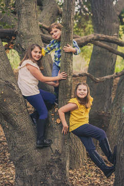 kids on a tree family photograhy session