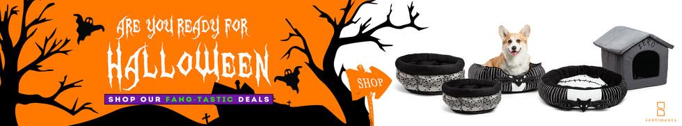 Online Banner for Halloween.jpg
