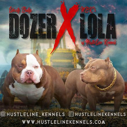 Lola x Dozer banner.jpg
