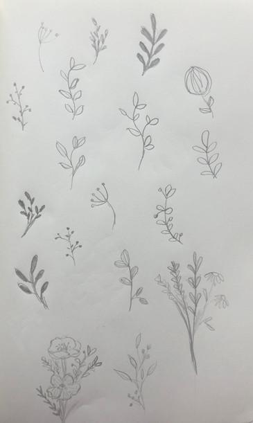 sketch6_floral.jpg