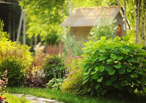 Jardin à l'anglaise sur-mesure avec son gazon et ses végétaux verdoyants réalisable dans les jardins de Bordeaux