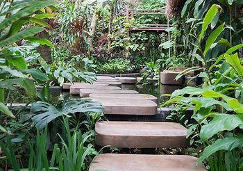 Pas japonais et plantes exotiques pour un jardin exotique chez vous réalisé par Jardin d'Echoppe