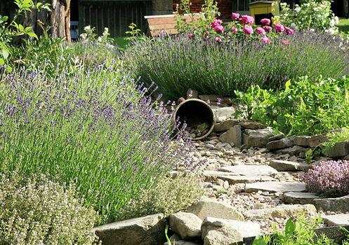 Jardin méditerranéen réalisable sur Bordeaux si l'ensoleillement de l'espace extérieur le permet