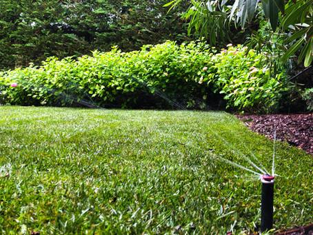 Le temps est venu d'arroser votre jardin
