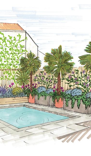 croquis terrasse piscine exotique moderne