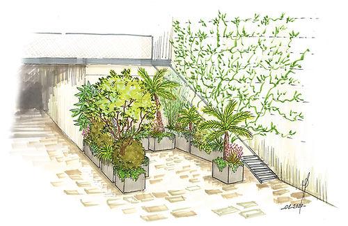 DC-croquis-amenagement-mur-vegetal.jpg