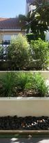 merignac-jardin-accueil-jardiniere.jpg