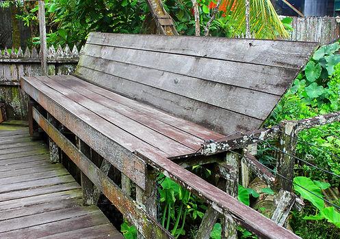 Jardin rustique au coeur des plantes mais nécessitant de l'entretien