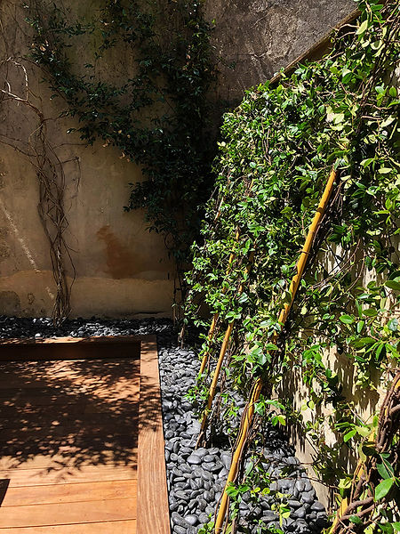 mur-vegetal-terrasse-bois.jpg