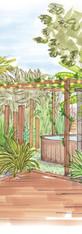 Végétalisation exotique d'un jardin