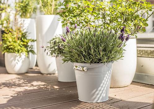 Jardin d'Echoppe vous propose d'aménager votre balcon avec pots et plantes pour créer l'ambiance que vous désirez