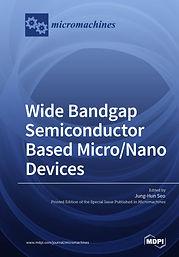 Wide Bandgap Semiconductor Based Micro_N