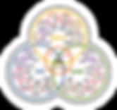 NOLA framework.png