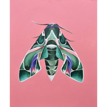 Moth Lady Three