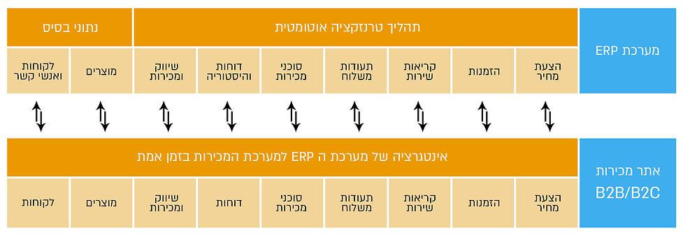אמיוס ישראל פיתחה אינטגרציה בין מערכת  SAP Business One לאתר E-COMMERCE B2B / C2B