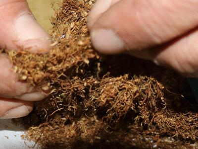 אש טבק ויורם בן דהן מומחים בטבק לגלגול  וסיגריות לגלגול במחיר זול בתל אביב