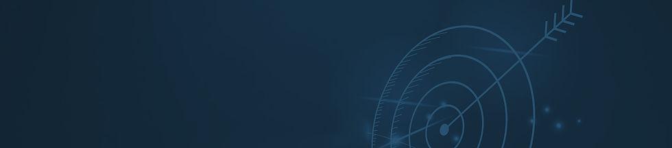 תמונת רקע, תהליך יישום יישום מערכת ERP של SAP באמוס
