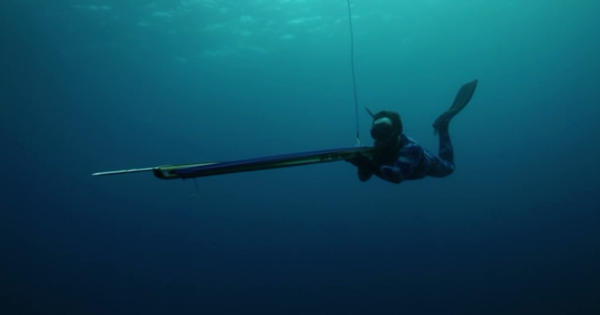 Eric Young Animal PlanetSpearfishing