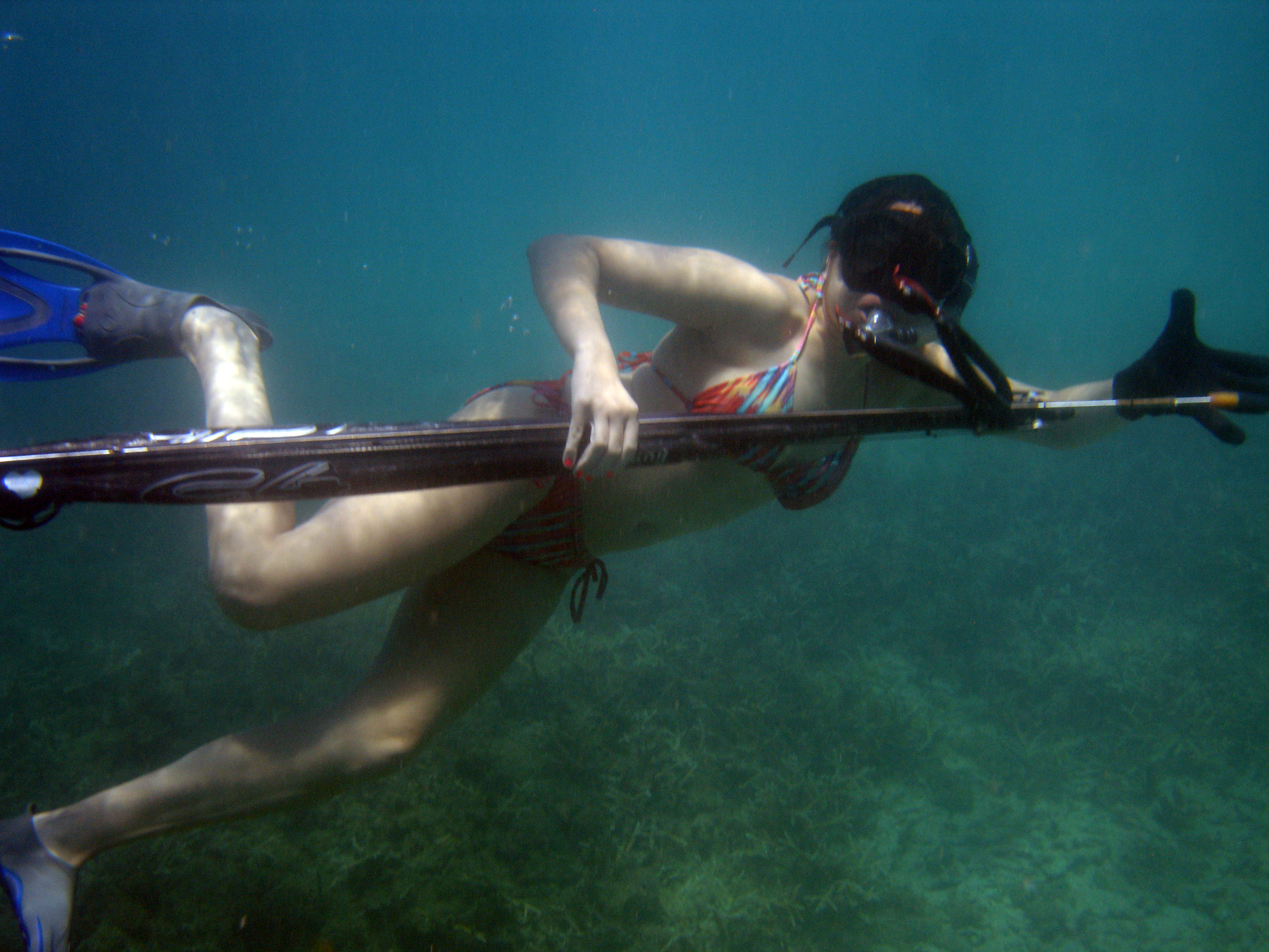 Reef spearfishing trips