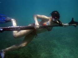Reef spearfishing trips