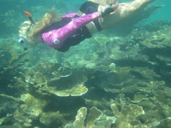 Private Snorkeling Trip