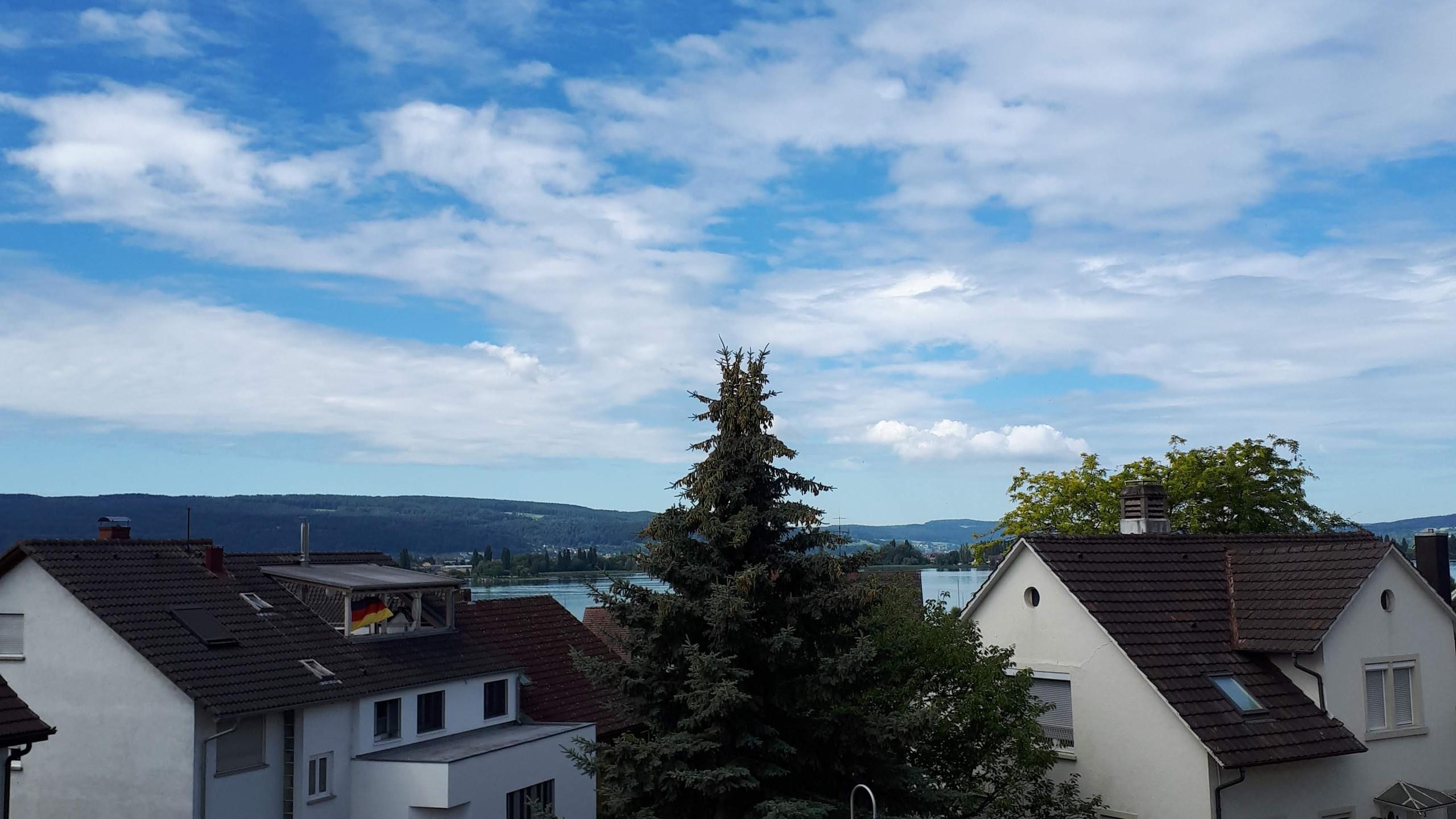 Die Aussicht vom Büro / view from my office