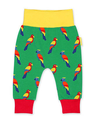 Toby Tiger Organic Kids Cloth Friendly Yoga Pants Parrot