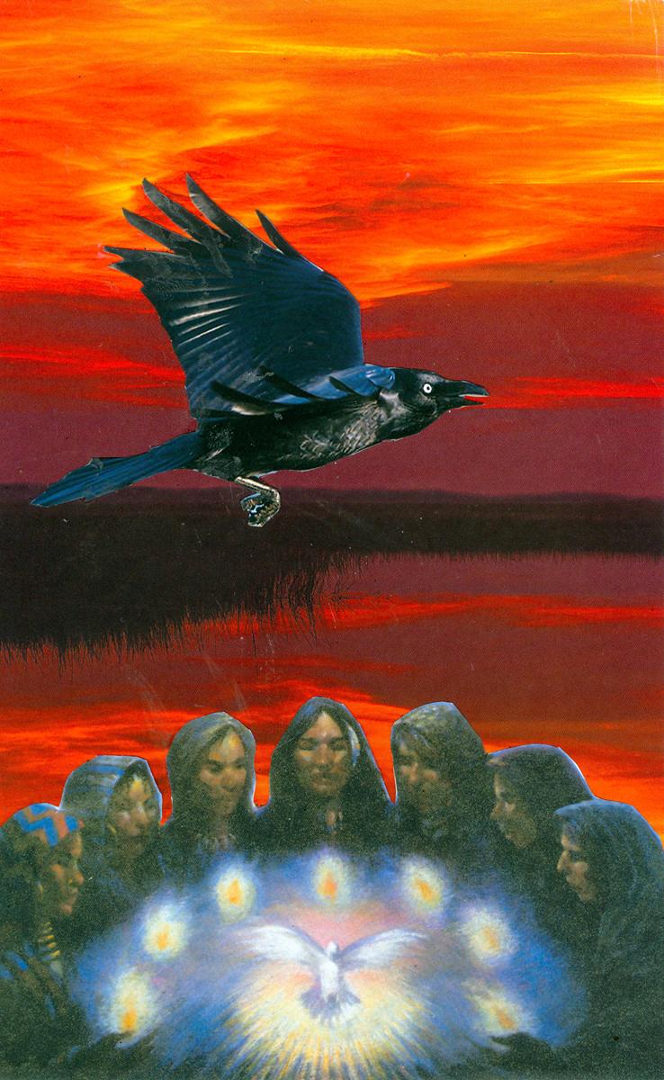 White Dove Crow Council
