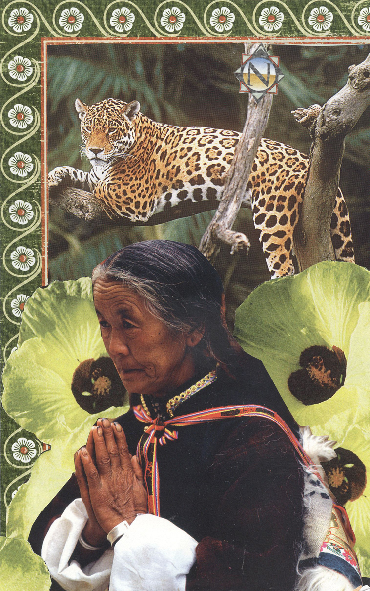 Song of the Jaguar