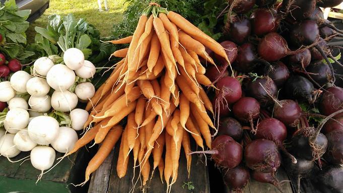 Market root veggies