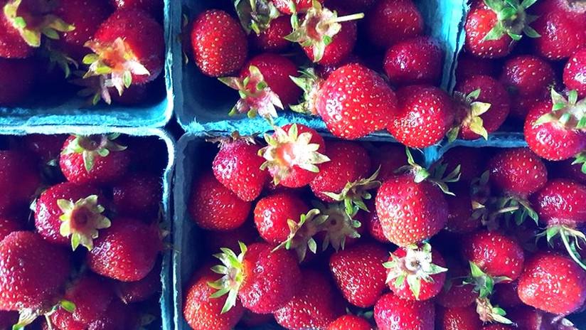 Spring strawberries