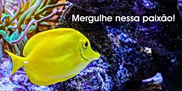 banner_aquarismo-pagina_mobile.png