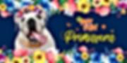 banner_produtos-pagina_mobile_primavera.